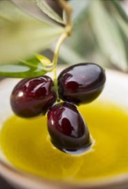 Puglia Please Olive Oil from Corato, Puglia, Italy